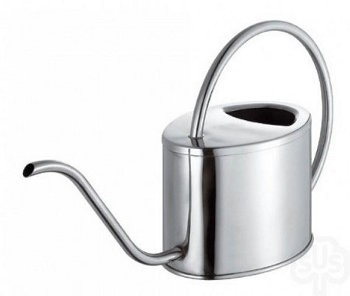 Watering Can: Venice